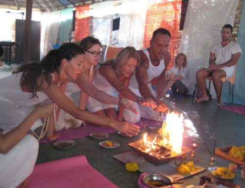 Expand Your Abilities with Ayurvedic Courses in India